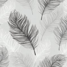 Whisper Black / White wallpaper by Arthouse
