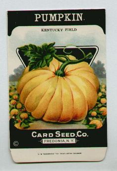 Antique Card Seed Company  Pumpkin
