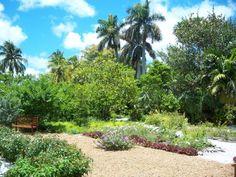 Garden of the Groves, Freeport Bahamas