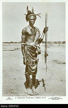 a-shilluk-warrior-upper-nile-sudan-africa-DRHPXX.jpg 338×540 pixels