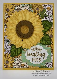 Stampin' Up! Celebrate Sunflowers Hugs Card – Stampin' in the Meadows Healing Hugs, Daisy, Sunflower Cards, Bee Cards, Stampin Up Catalog, Flower Center, Stamping Up Cards, Get Well Cards, Fall Cards
