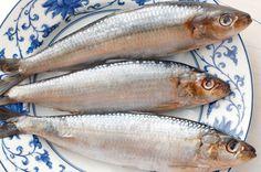 CLIQUE AQUI! Os 8 Benefícios da Sardinha Para Saúde Agora você vai descobrir os benefícios da sardinha para a saúde, são oito motivos para você incluir esse alimento no seu cardápio. Talvez, muito... http://saudenocorpo.com/os-8-beneficios-da-sardinha-para-saude/