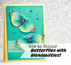 Video showing how to colour the First Edition Butterfly with Blendabilities from mixed colour families. www.alisatilsner.com
