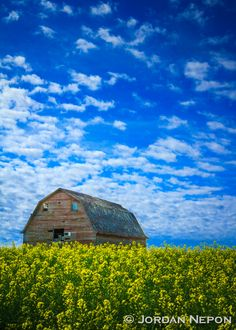Barn in Manitoba, Canada. Photo by Jordan Nepon.