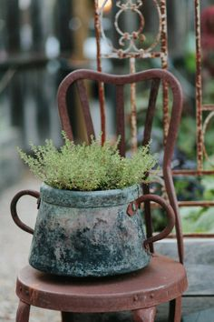 Rustic display for your garden - old chair and container with plant. #shabby