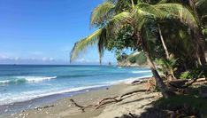 Puerto Jimenez: Authentic Costa Rican Experience - Seek and Wonder Landscape Photography, Nature Photography, Corcovado National Park, Dolphin Tours, Sustainable Tourism, Yoga Retreat, Best Hotels, Costa Rica, Kayaking
