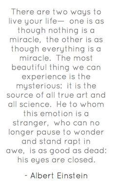 Another brilliant quote from Albert Einstein...