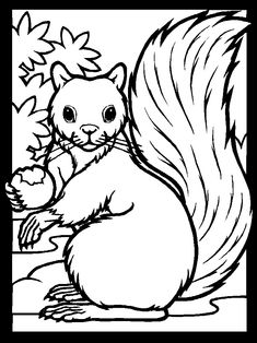 Squirrel Coloring Book Page