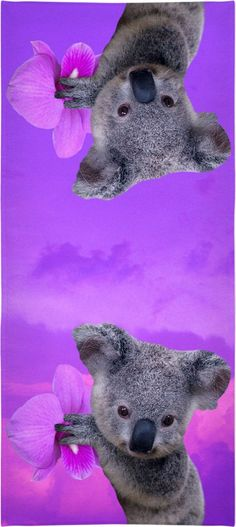 Check out my new product https://www.rageon.com/products/koala-and-orchids-beach-towel?aff=BWeX on RageOn!
