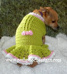 Instant Download Crochet Pattern - AMber Dog Dress, Small Dog Sweater 2-15 lbs  This is an elegant dress. It has a ruffle skirt and pretty
