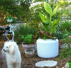 12 Creative Ways to Recycle Washing Machine Drums Garden Deco, Garden Yard Ideas, Garden Tub, Metal Planters, Large Planters, Washing Machine And Dryer, Washing Machines, Washer Drum, Diy Projects To Try