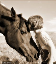 horses aren't just any animal. they're the creatures that make everything alright when everything goes wrong.