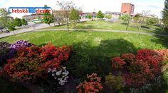 Rozkvetlá krása u chebského nádraží Golf Courses, Sidewalk, Side Walkway, Walkway, Walkways, Pavement
