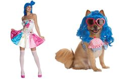 Halloween Costume for Your Cute Puppy - Katy Perry Style  http://kplg.co/MjY9