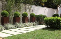 jardins de vasos -