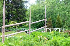 Heinäseiväsaita - puutarha