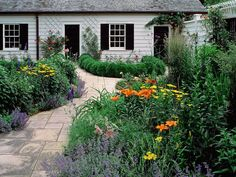 Plantas jardin Cottage