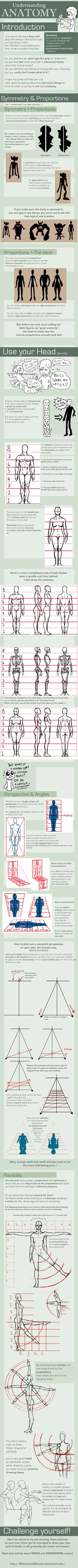 UNDERSTANDING ANATOMY: part I by =FOERVRAENGD | #drawing #tutorial #training #creative #paper #pen #design #character #illustration #basics < found on www.deviantART.com pinned by an #advertising agency from #Hamburg / #Germany - www.BlickeDeeler.de | Follow us on www.facebook.com/Blickedeeler