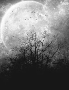 The Moon, can u take me there & back?