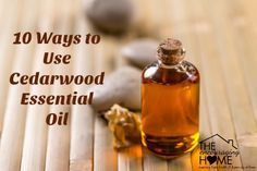 Did you know thatthe oil from a tree could be so beneficial to your overall wellness? And that it could be so calming? Do you remember the cedarwood chest or closets that were in your grandparent&…