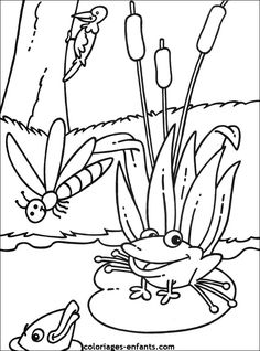 Coloring Books, Coloring Pages, Frog Drawing, Frog Crafts, Digi Stamps, Art Pages, Beautiful Artwork, Marie, Embroidery Designs
