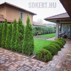 """169 kedvelés, 1 hozzászólás – SD KERT - Spiegel Ákos (@topgarden) Instagram-hozzászólása: """"#moderngarden #kertépítés #kerttervezés #letisztult #minimalist #topgarden #danica #gardendesigner…"""" Sidewalk, Modern, Instagram, Trendy Tree, Side Walkway, Walkway, Walkways, Pavement"""