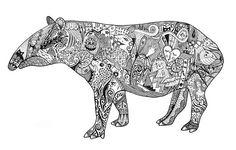 tapirus - Buscar con Google