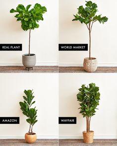 Fake Plants Decor, House Plants Decor, Real Plants, Faux Plants, Large Fake Plants, Indoor Tree Plants, Decorating With Fake Plants, Ikea Fake Plants, Fake Indoor Trees
