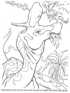 Image Result For Dinosaur Coloring Pages