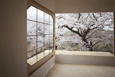 emmasnotes_Teahouse Tetsu Treehouse In Hokuto City_Japan