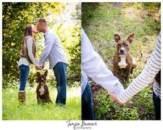 New Dogs Photography Family 40 Ideas - Cataleya Rustic Family Photos, Fall Family Photos, Fall Photos, Autumn Photography, Couple Photography, Animal Photography, Photography Photos, Fall Couple Pictures, Dog Pictures