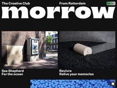 Morrow - www.morrow.cc Say Hi, Rotterdam, Service Design, Storytelling, Website, Instagram, Seeds