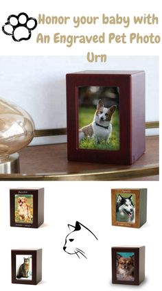 Wood Pet Urn For Cremated Ashes With Photo of Beloved Pet, Adjust your pet's photo without disturbing cremated ashes.A sliding panel compartment that holds your pet's ashes. Requires a screwdriver to access the container.. SIMPLE AND ELEGANT: Cremation keepsake that can be placed anywhere in the home or office. Perfect container for pet ashes, cats or dogs. Dog Urns, Pet Cremation Urns, Pet Remembrance, Pet Ashes, Buy A Dog, Cat Memorial, Animal Pillows, Your Pet, Labrador Retrievers