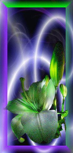 Alte flori miscatoare