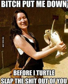 That turtle ain't playing around