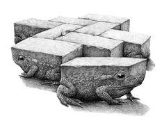 Лягушки от Redmer Hoekstra