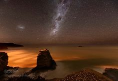 Gannet colony at night  A gannet colony under the Milky Way in New Zealand  Camera: NIKON D800 Lens: 14.0-24.0 mm f/2.8 Focal Length: 14mm Shutter Speed: 25sec Aperture: f/2.8 ISO/Film: 3200  Image credit: http://ift.tt/2aakghj Visit http://ift.tt/1qPHad3 and read how to see the #MilkyWay  #Galaxy #Stars #Nightscape #Astrophotography