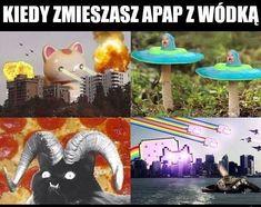 wszystkie memy z neta :v # Humor # amreading # books # wattpad Wtf Funny, Funny Cute, Polish Memes, Wings Of Fire Dragons, Funny Mems, Quality Memes, Funny Comics, Best Memes, Some Fun