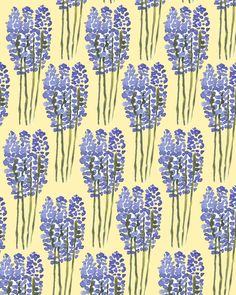 Lavender. #pattern #illustration #flowers