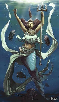 Beautiful Mermaid Illustrations | Petshopbox Studio