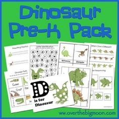 Dinosaur Pre-K/Preschool/Tot Pack!  30 pages of FUN and EDUCATIONAL preschool activities for your kiddos! by lorene
