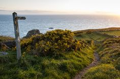 Coastal path, Pembrokeshire, Wales