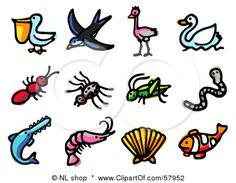 Google Image Result for http://images.clipartof.com/small/57952-Royalty-Free-RF-Clipart-Illustration-Of-A-Digital-Collage-Of-Animals-Pelican-Swallow-Emu-Swan-Ant-Spider-Grasshopper-Worm-Sawfish-Prawn-Shell-And-Clown-Fish.jpg