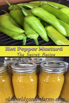 Hot Pepper Mustard Recipe The Secret Is Revealed! is part of Stuffed peppers - Over the past several years, many of you have asked us for our Hot Pepper Mustard Recipe The secret recipe has never been revealed, until now! Hot Pepper Recipes, Hot Sauce Recipes, Banana Pepper Recipes, Recipes With Banana Peppers, Relish Recipes, Salsa Recipe, Sweet Banana Peppers, Stuffed Banana Peppers, Pickled Banana Peppers