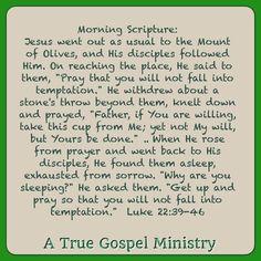 Morning Scripture