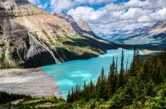 Peyto Lake, Banff National Park, Canada, by Daniel Kent Pretty Landscapes, Earth Photos, Canada, Canadian Rockies, Banff National Park, Image Title, Media Images, Dom, Planets