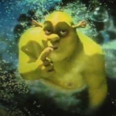 Shrek Memes, Dankest Memes, Funny Memes, Shrek Funny, Jokes, Dead Memes, Mood Pics, Cartoon Memes, Cartoons