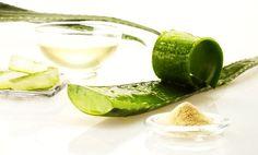Aloe Vera, Aloe Barbadensis Miller, Gel Aloe, Fresh Fruit, Grapefruit, Beverages, Ethnic Recipes