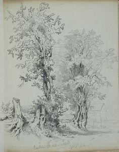File:Lines family sketchbook - 015 - Hawthorne at Wall, Lichfield. Landscape Sketch, Landscape Drawings, Abstract Landscape, Plant Drawing, Paper Drawing, Pencil Drawings, Art Drawings, Dream Catcher Drawing, Tree Sketches