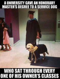 Such a sweet story. Service dog gets honorary degree.